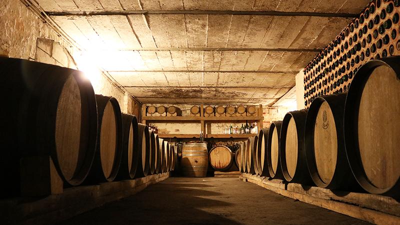 Winnice Jaworek, piwnica, Dolny Śląsk, polskie wino, degustacja wina